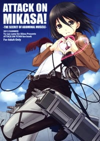 ATTACK ON MIKASA Cover